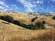 California hills of Mount Diablo