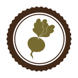 fresh vegetable product seal vector illustration design