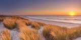 Dunes and beach at sunset on Texel island, The Netherlands - 137936709