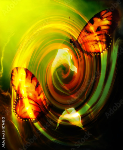flying butterfly on decorative background with cala flower and swirl effect.