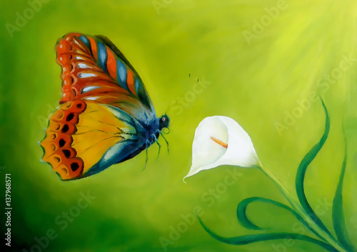 flying butterfly on green background with cala flower.