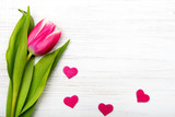 Tulip flower small hearts on white wooden background, copy space