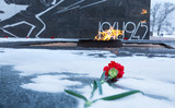 Carnation flower assigned to eternal flame in memory of soldiers who died during the Second World War. Kremlin, Nizhniy Novgorod, Russia