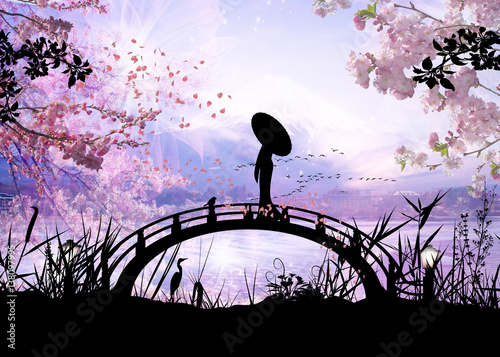 girl standing on the bridge silhouette art photo manipulation © Nig3la