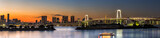 Panorama view of Tokyo city and Rainbow bridge at dusk time , Japan
