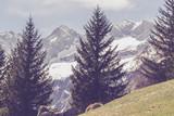 alta montagna - luci primaverili
