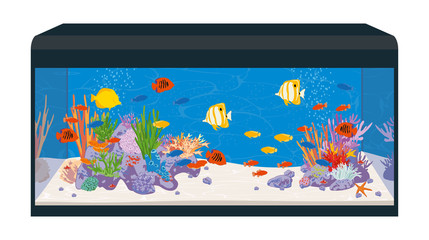 Marine reef aquarium with fish and corals