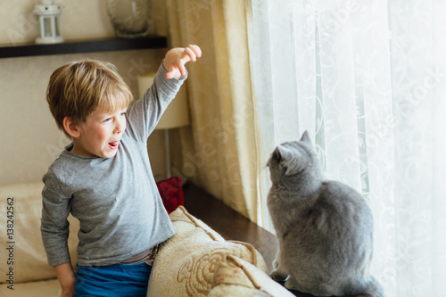 Cute little 5 years old boy playing with gray cat at home.