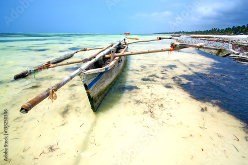 Papiers peints Zanzibar zanzibar beach seaweed indian ocean