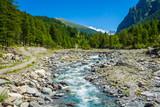 Mountain creek landscape