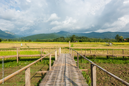 Fotobehang Bamboo walkway rice terraces on mountain in Nan Province, northern of Thailand.
