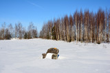 A lonely chair in the middle of snowy field on a background of birch trees and blue sky in winter - think creative
