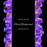 background texture made of iris and place for text