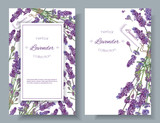 Lavender flowers banners - 138399521