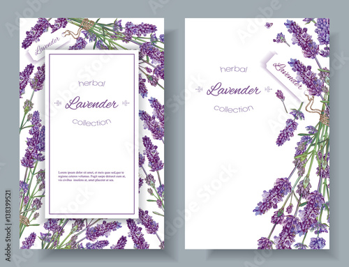 Lavender flowers banners