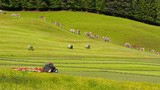 Alpine farming. Tractors working on the field. Austria.