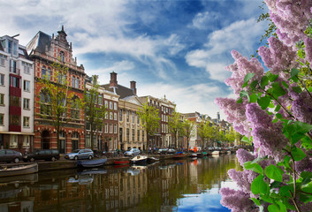 One of canals in Amsterdam old town with green trees at spring day, Holland with lilac flowers