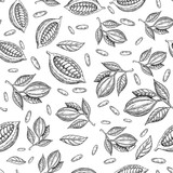Cocoa branch vector seamless pattern. Superfood drawing. Isolated hand drawn background on white background. - 138493752