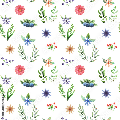 Seamless watercolor pattern with flowers and leaves isolated on white background - 138495182