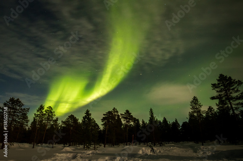 Aluminium Noorderlicht Northern lights show over the trees
