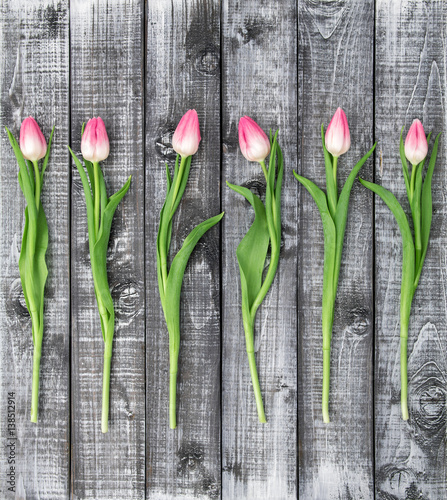 Floral flat lay Tulip flowers rustic wooden background