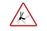 zone infectée moustiques - 138556516