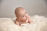Closeup portrait of a cute little boy