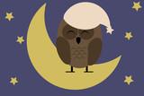 night owl sleeping