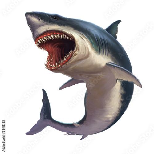 Fototapeta Great white shark on a white background
