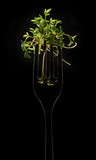 The Fork with Sprig of Cress on Black Background - 138620747