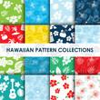 Hawaiian seamless pattern collection