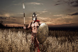 Strong Spartan warrior in battle dress with a shield and a spear - 138663182