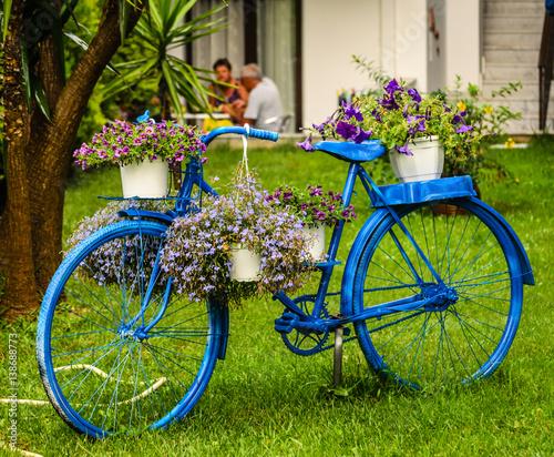 Fotobehang Fiets Blue bike on the lawn