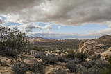 Ryan Mountain Trailhead, Joshua Tree National park