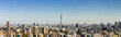 Panorama view of tokyo city and skyline in clear sky day