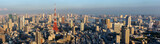 Panorama view of Tokyo city skyline , Japan
