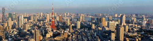 Fotobehang Tokio Panorama view of Tokyo city skyline , Japan