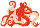 Red spotted octopus