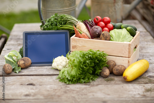 close up of vegetables with tablet pc on farm