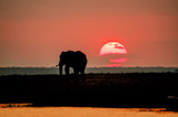 Red sky in Africa