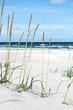 Baltic sea - 138906123