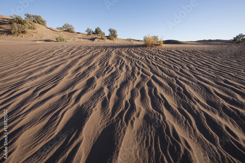 paesaggio desertico Poster