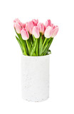 Pink tulips bouquet in old white vase. Isolated over white background
