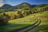 Droga wśród Pienińskich szczytów górskich