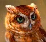 Рыжая сова