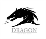 dragon, dragon head - 138998557