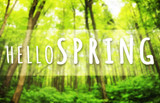 Beautiful greeting card with words: Welcome spring