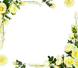 Frame of white roses (Burnet double white, shrub rose) and lily of the valley (Convallaria majalis) on a white background with space for text. Top view, flat lay