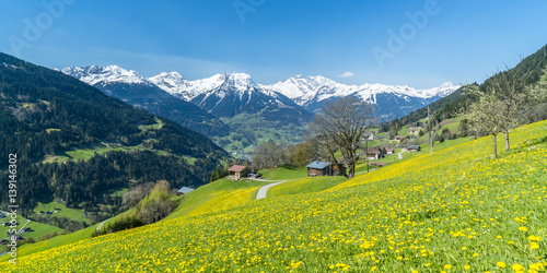 Frühling in den Alpen - 139146302