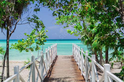 Poster natural gorgeous amazing view of wooden bridge leading to the beach through trop